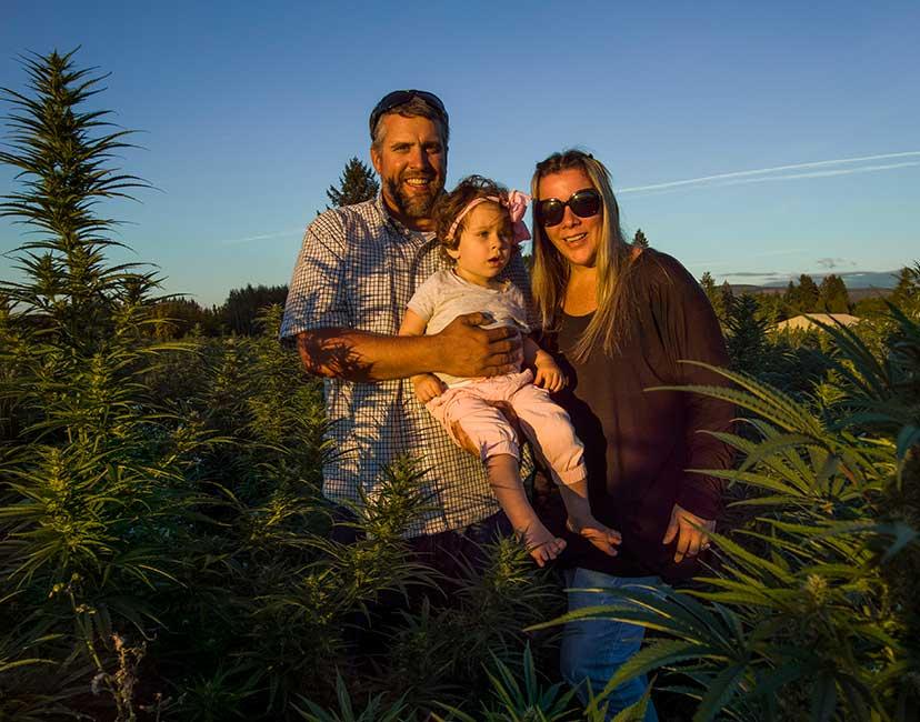 CBD hemp oil grown in USA