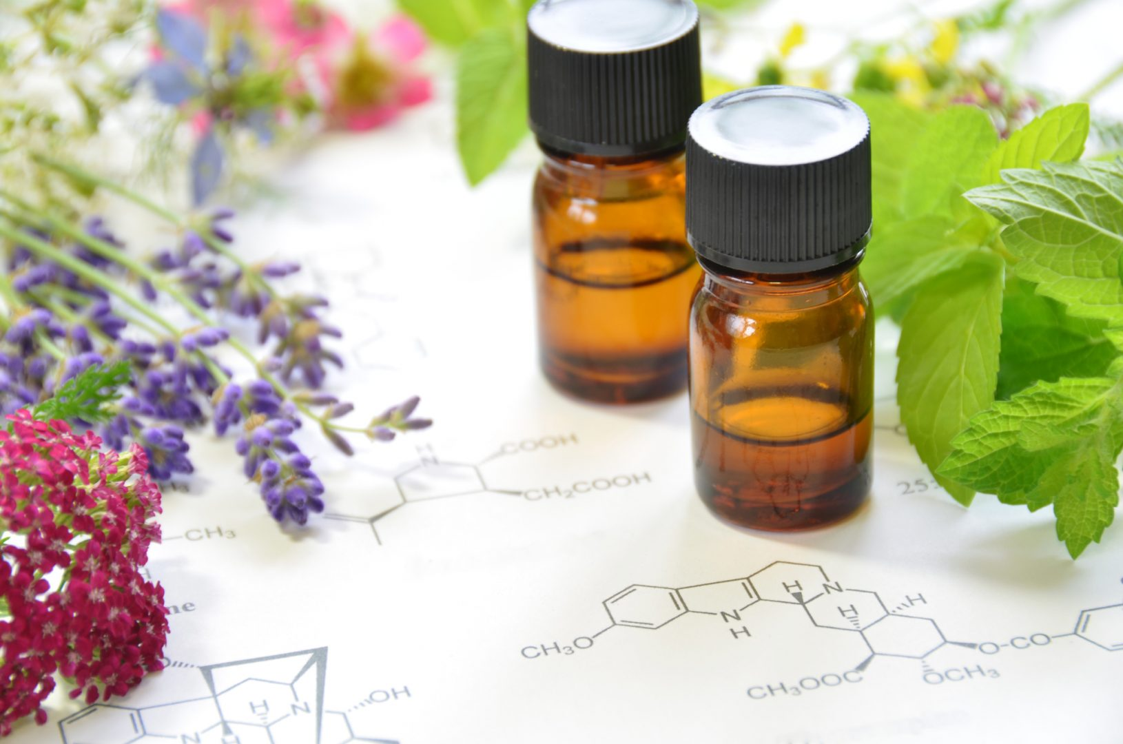 A Tale of CBD Oil and the Terpene